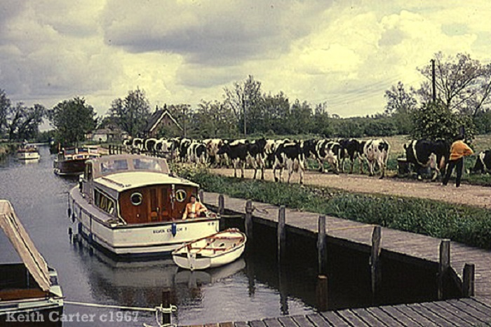 The staithe at Rockland St. Mary c1967.